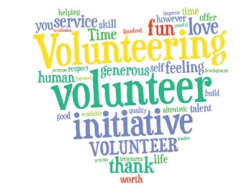 Po, unë jam vullnetare!
